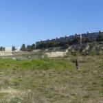 L'area del Catino, previsto come parco urbano   foto di Egildo Tagliareni