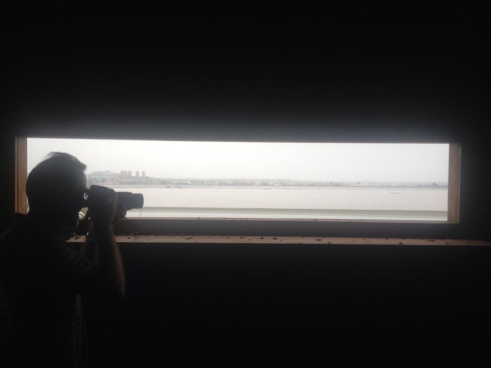 Panorama dalla torretta di avvistamento